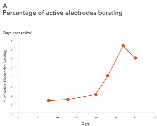 bb-neurons_MEA-Bursting-1-opt