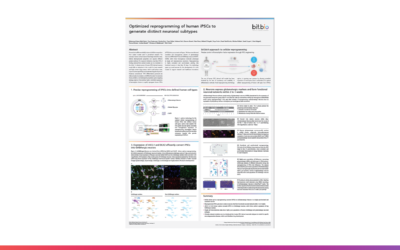 Optimized reprogramming of human iPSCs to generate distinct neuronal subtypes